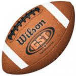 NCAA Game Ball
